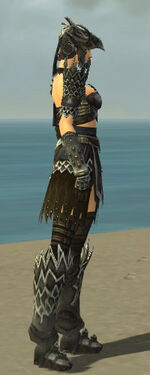 Warrior Silver Eagle Armor F gray side alternate