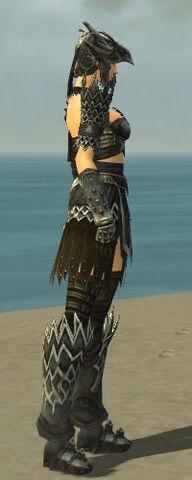 File:Warrior Silver Eagle Armor F gray side alternate.jpg