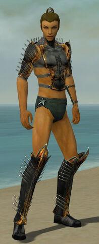 File:Assassin Exotic Armor M gray chest feet front.jpg