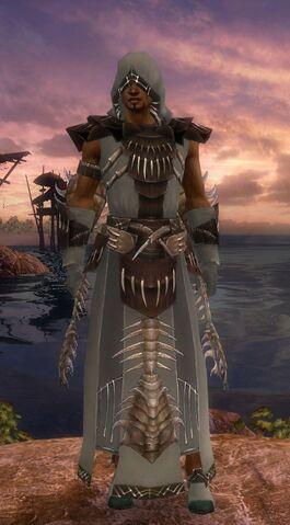 File:Dervish Primeval Armor Male Front.jpg