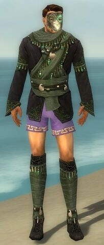 File:Mesmer Elite Luxon Armor M gray chest feet front.jpg