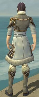 Elementalist Norn Armor M gray chest feet back
