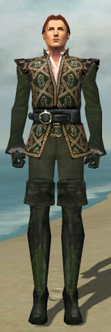 File:Mesmer Courtly Armor M gray front.jpg