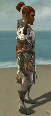 Paragon Norn Armor M gray side