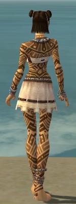 File:Monk Labyrinthine Armor F dyed back.jpg