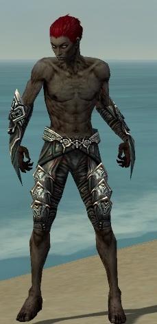 File:Necromancer Monument Armor M gray arms legs front.jpg