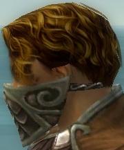 File:Ranger Elite Canthan Armor M gray head side.jpg