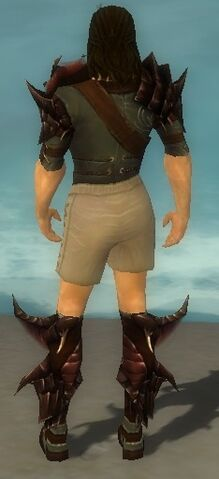File:Ranger Primeval Armor M gray chest feet back.jpg