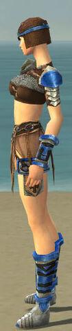 File:Warrior Gladiator Armor F dyed side.jpg