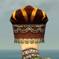 File:Ritualist Exotic Armor F dyed head back.jpg