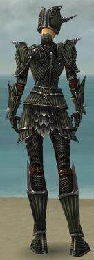 Warrior Wyvern Armor F gray back