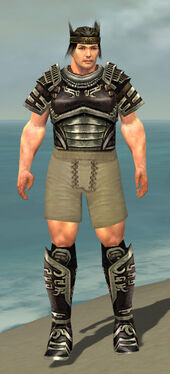 Warrior Ancient Armor M gray chest feet front