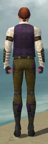 File:Mesmer Ascalon Armor M dyed back.jpg