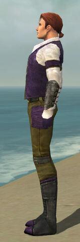 File:Mesmer Ascalon Armor M dyed side.jpg