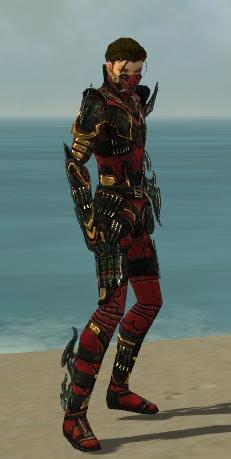 File:Assassin Elite Kurzick Armor M red profile.jpg