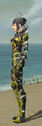 File:Necromancer Elite Kurzick Armor F dyed side.jpg