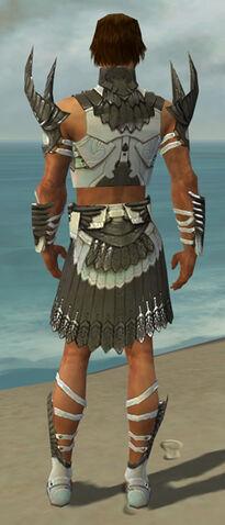 File:Paragon Elite Sunspear Armor M gray back.jpg