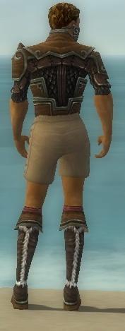File:Ranger Elite Canthan Armor M gray chest feet back.jpg