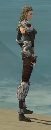 File:Ranger Elite Fur-Lined Armor F gray side.jpg
