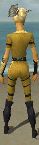 File:Assassin Shing Jea Armor F dyed back.jpg