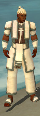 Monk Sacred Armor M gray front
