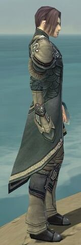 File:Elementalist Asuran Armor M gray side.jpg