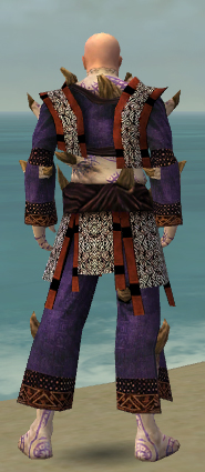 File:Monk Primeval Armor M dyed back.jpg