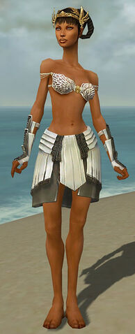 File:Paragon Ancient Armor F gray arms legs front.jpg