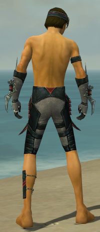 File:Assassin Elite Canthan Armor M gray arms legs back.jpg