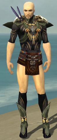 File:Ritualist Elite Kurzick Armor M gray chest feet front.jpg