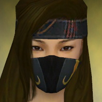 File:Assassin Vabbian Armor F dyed head front.jpg