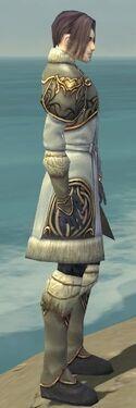 Elementalist Norn Armor M gray side
