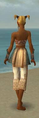 Monk Vabbian Armor F gray arms legs back