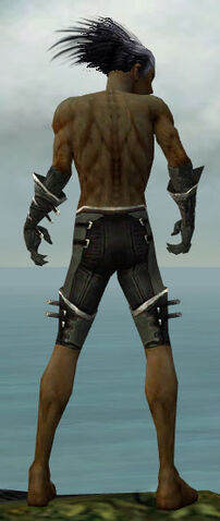 File:Necromancer Kurzick Armor M gray arms legs back.jpg