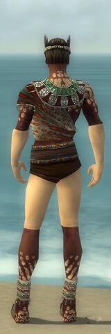 File:Ritualist Elite Exotic Armor M gray chest feet back.jpg