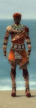 Ritualist Elite Exotic Armor M dyed front