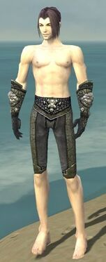 Elementalist Elite Stoneforged Armor M gray arms legs front