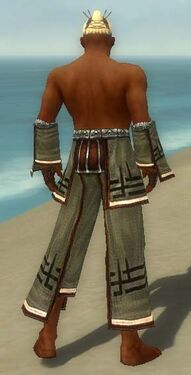 Monk Kurzick Armor M gray arms legs back