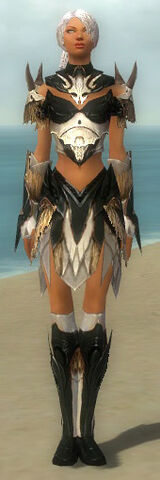 File:Paragon Norn Armor F dyed front.jpg