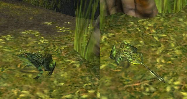 File:Ambient frog in LA.jpg