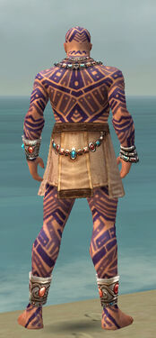Monk Labyrinthine Armor M dyed back