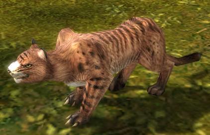 File:Lynx.jpg