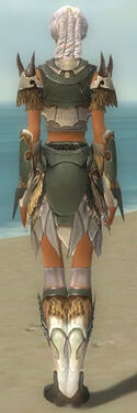 Paragon Norn Armor F gray back