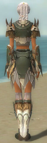 File:Paragon Norn Armor F gray back.jpg