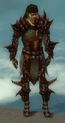 File:Ranger Primeval Armor M gray front.jpg