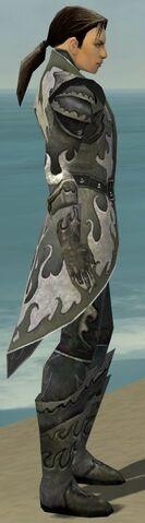File:Elementalist Elite Flameforged Armor M gray side.jpg