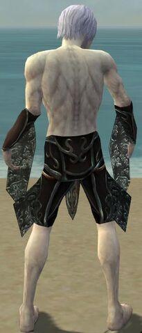 File:Necromancer Vabbian Armor M gray arms legs back.jpg