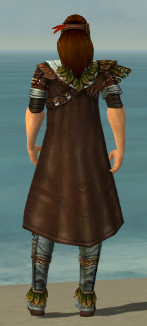 File:Ranger Druid Armor M gray chest feet back.jpg