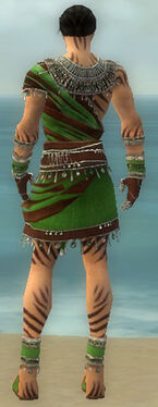 Ritualist Exotic Armor M dyed back