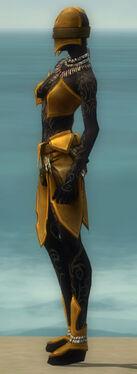 Ritualist Kurzick Armor F dyed side